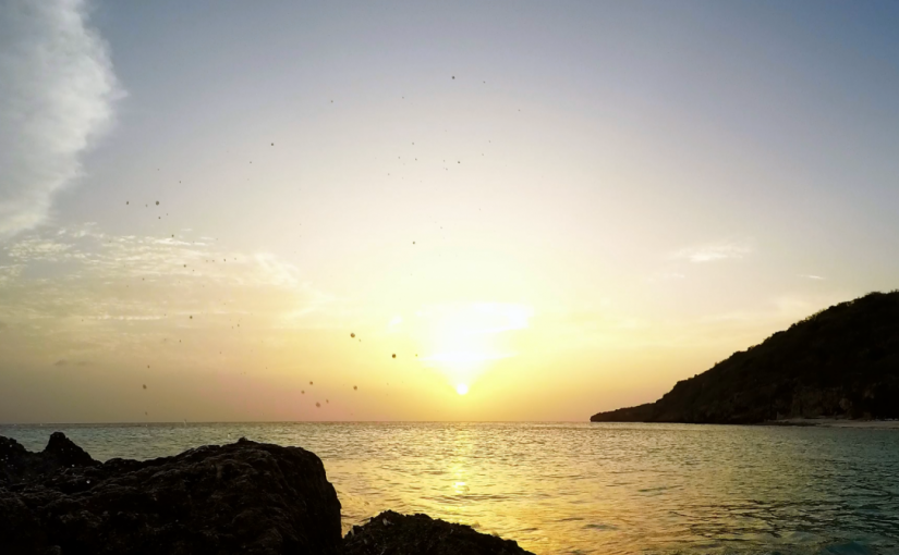 Video: Sunset @ Curaçao (3)